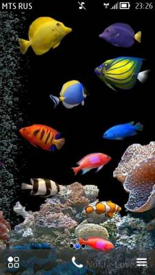 Aquarium HD by Soumya